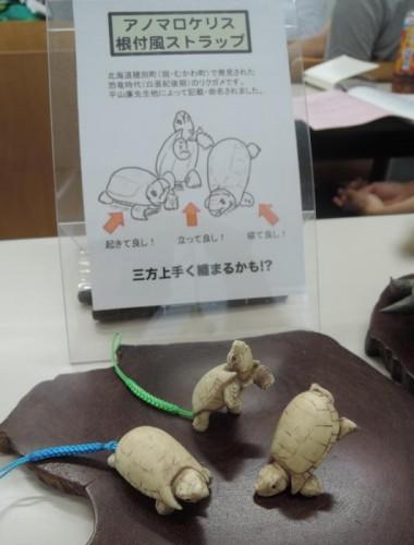 化石研究会.早稲田.2