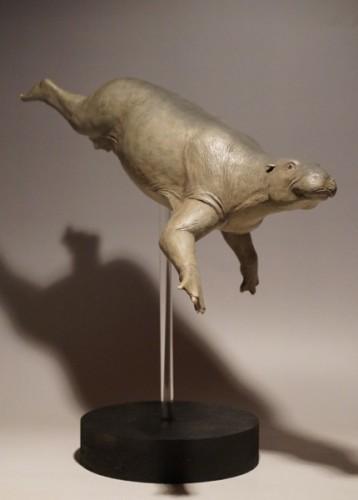 Paleoparadoxia.Desmostylia.パレオパラドキシア.デスモスチルス.古生物.1