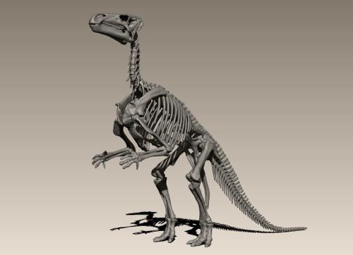 iguanodon.cg