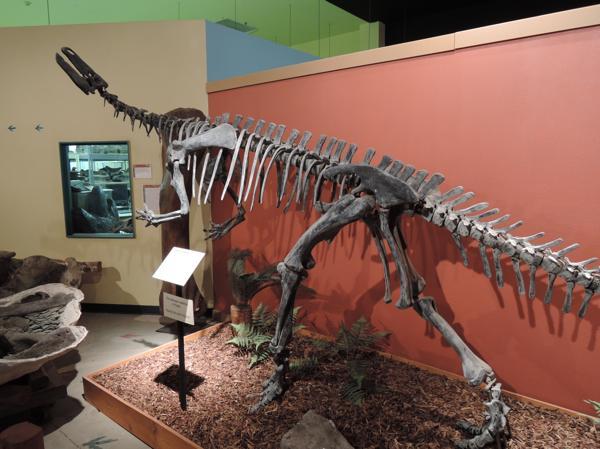 □カンプトサウルス | ふらぎ雑記帳