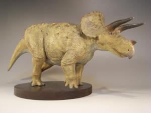Triceratops20101.jpg