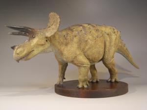 Triceratops20102.jpg